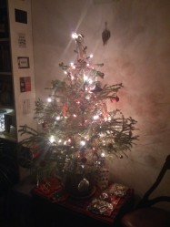 tree-2013